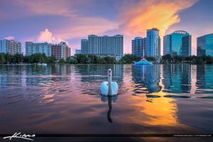 Lake-Eola-Park-Swan-in-Downtown-Orlando-Florida by CaptainKimo