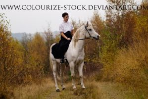 Horse and Rider Stock 3 by Colourize-Stock