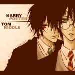 HP: Harry and Tom by len-yan