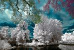 Cayac Infrared 590nm by ToneeGee