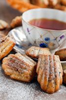Madeleine with schocolate chip by khmaria