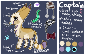 Captain Reference 2013 by catpain