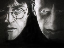 Harry Potter and Lord Voldemort by Sasoriakasuna1