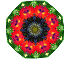Summer Mandala by Sulfura