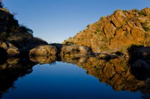 reflections by Sally-Revell