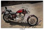 Old-timer by Horzescu