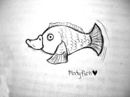 platyfish by akosikeith