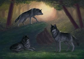 Wolves by Neirr