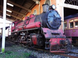 Jung 2-8-2 ''Mikado'' DTCRC by SD40-2