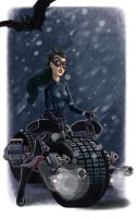 Catwoman: Dark Knight Rises by scotlanddbarnes