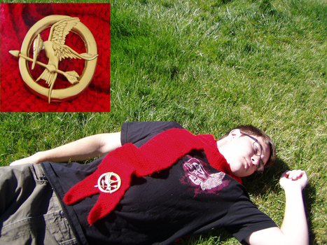 Hunger Games: Mockingjay Pin by Taikxo