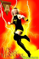 Amalgam - Ms. Mary Marvel by dlfurman