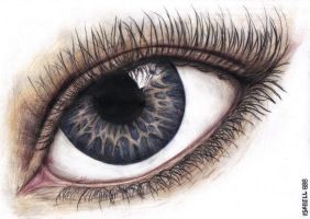 A4 eye scan by Isabell888