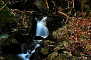 ...as we go with the flow by Pulse72