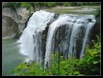 Middle Falls flower - Aug 2007 by pearwood