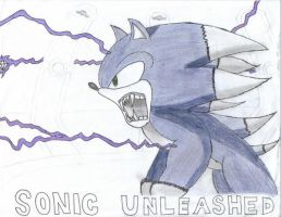 Sonic Unleashed 'not done' by OrotheEchidna