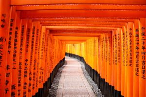 Fushimi Inari by hhamblin
