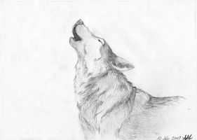 howling wolf by Nanook94