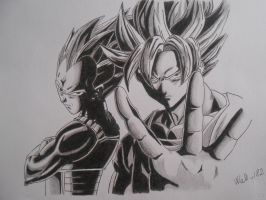 Dragon Ball Z - Goku and Vegeta by Wale-182