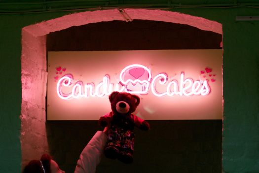Candy Cakes + Bear by FurLined
