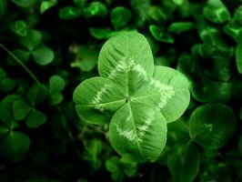 HAPPY SAINT PATRICK 'S DAY by lamelobo