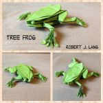 Tree Frog by Adamite85