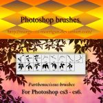 Parthenocissus brushes by margarita-morrigan