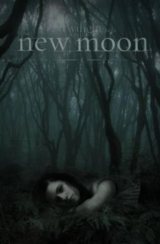 NEW MOON POSTER : he's gone by annaGOESpanasonic