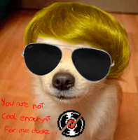Dogstuck Dave strider @HOMESTUCK by CarcinoVantasKisu