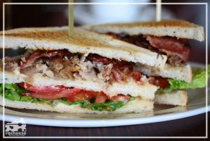 chicken and bacon sandwich by racheese