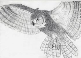 Great Horned owl by whitexlightning