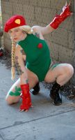 Cammy At the Ready by StormbringerPhoto