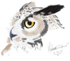 MyPaint Practice -OWL- by MaerikDragon
