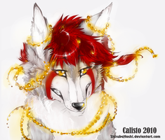 Calisto 03 by ShirubaHoshi