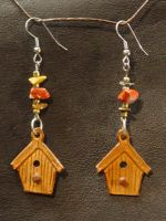 BirdHouse Ear Rings by larrysleather