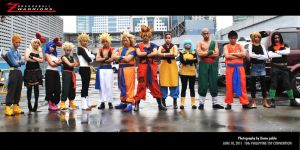 2011 Dragonball Z Warriors by jeffbedash325