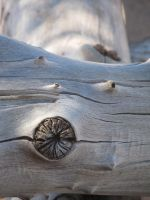 Log in Sand by xdancingintherain