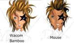 Comparison with mouse and wacom bamboo tablet by princessslash