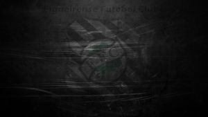 Figueirense Futebol Clube by RDJDesign
