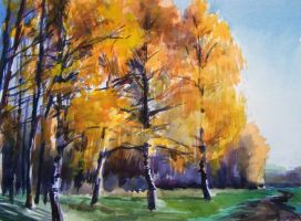 birches studi by tehub