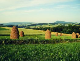 sheaves of hay / siano in Poland by KarolinaGlod