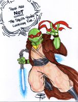 Teenage Mutant Jedi Master by FooRay