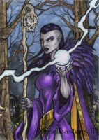 Elf Sketch Card - Spellcasters II by tonyperna