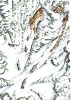 quoll in the snow by Snake-Artist
