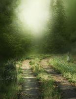 Misty Path background by moonchild-ljilja