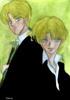 HP7-Draco and Scorpius Malfoy by Dhesia