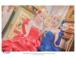 Type-Moon Fes 10th Anniversary Event Official Pamp by Korixxkairi