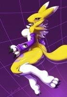 Renamon +digimon+ by nancher