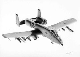A-10 Commission 3 by Raptorguy