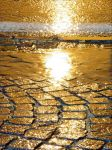Golden rain by KLOD